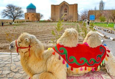 Түркістан облысының жаңа гербіне байқау жарияланды